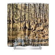 Kneeling On The Edge Shower Curtain