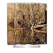 Knees And Reflections Shower Curtain