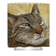 Knowing Look Of Wisdom Shower Curtain