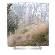 Misty Koa Ridge  Shower Curtain