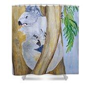 Koala Still Life Shower Curtain