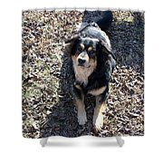 Kody 2 Shower Curtain