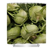 Kohlrabi Shower Curtain