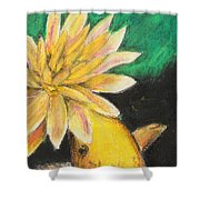 Koi And The Lotus Flower Shower Curtain