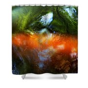 Koi Dream Shower Curtain