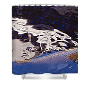 Koi Pond Abstract Shower Curtain
