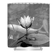 Koi Pond With Lily Pad And Flower Black And White Shower Curtain
