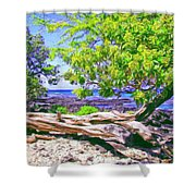 Kona Coast Shower Curtain