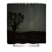 Kookerboom Tree With Milky Way Shower Curtain