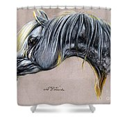 Kordelas Polish Arabian Horse Soft Pastel Shower Curtain