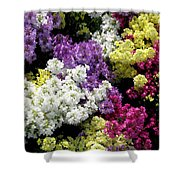 Many Colors Make A Beautiful Garden Shower Curtain