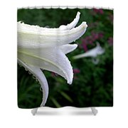 Korean Lily Shower Curtain