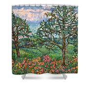Kraft Avenue In Blacksburg Shower Curtain