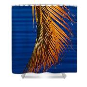 Kundalini Shower Curtain