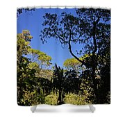 jungle in La Amistad National Park Panama 1 Shower Curtain