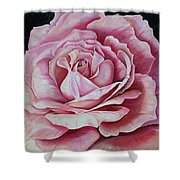 La Bella Rosa Shower Curtain