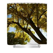 La Boca Ranch Cottonwood Shower Curtain