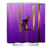 La Loupiote In Lavender Shower Curtain