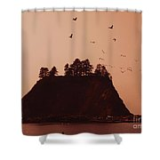 La Push Silhouette With Birds Shower Curtain by Kym Backland