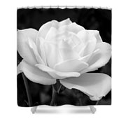La Rosa In Black And White Shower Curtain