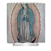 La Virgen De Guadalupe Shower Curtain