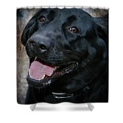 Lab Smile Shower Curtain