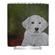 Labrador Shower Curtain