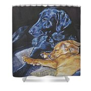 Labrador Love Shower Curtain