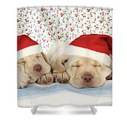 Labrador Puppy Dogs Wearing Christmas Shower Curtain