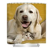 Labrador With Cat Shower Curtain