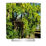 Laburnum By The River Shower Curtain