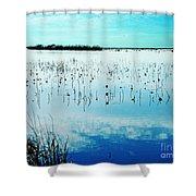 Lacassine Nwr Blue Pool Shower Curtain