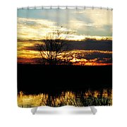 Lacassine Painted Sunset Shower Curtain