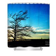 Lacassine Tree Shower Curtain