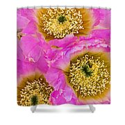 Lace Cactus Flowers Shower Curtain