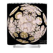 Lace Shower Curtain by Elizabeth McTaggart