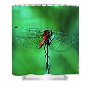 Lace Wings Shower Curtain