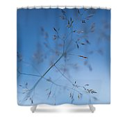 Lacy Patterns Of Grass Shower Curtain