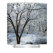 Lacy Snowfall Shower Curtain