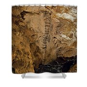 Ladder To The Center Of The Earth Shower Curtain