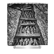 Ladder To The Treehouse Shower Curtain