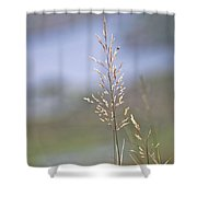 Lades View Meadow Shower Curtain