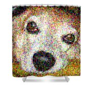 Lady 10 Shower Curtain