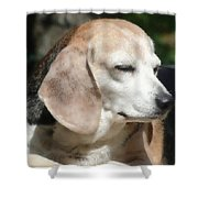Lady 12 Shower Curtain