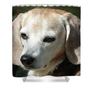 Lady 16 Shower Curtain
