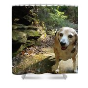 Lady 17 Shower Curtain