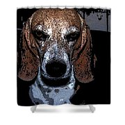 Lady 3 Shower Curtain