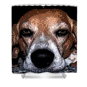Lady 5 Shower Curtain