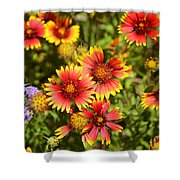 Lady Bird And Her Flowers Shower Curtain