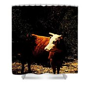 Lady Cow Shower Curtain